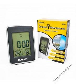 Метеостанция GARIN Точное Измерение WS-1 термометр-гигрометр-часы
