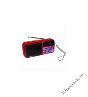 Радиоприемник BKK S97 (2 microSD, USB, FM)+3 аккум 18650